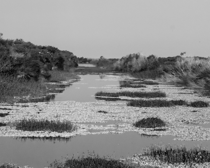 bw-canal
